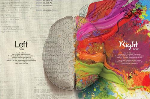 Los dos lados del cerebro: uno colorido, otro no